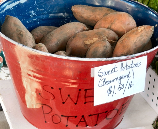 photo of a bucket of sweet potatoes