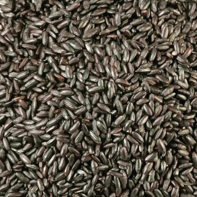how to cook forbidden black rice
